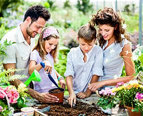 Gardening In-Store Now