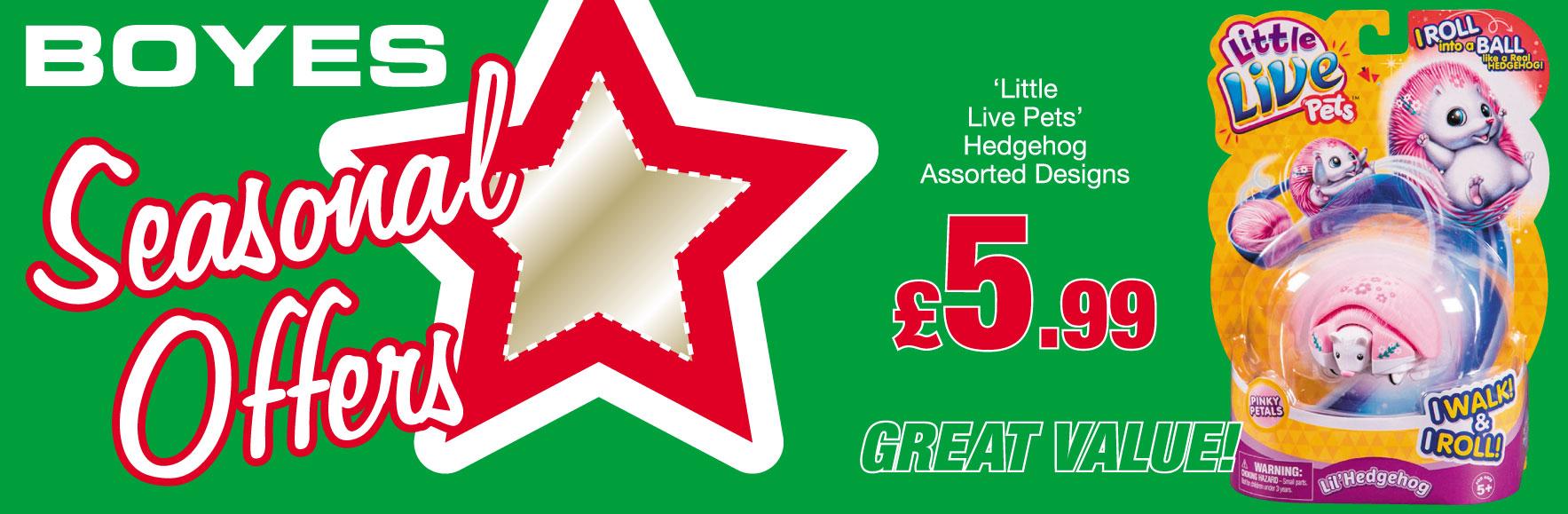 'Little Live Pets'. Hedgehog. Assorted Designs. ONLY £5.99